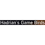 Hadrians Game Birds